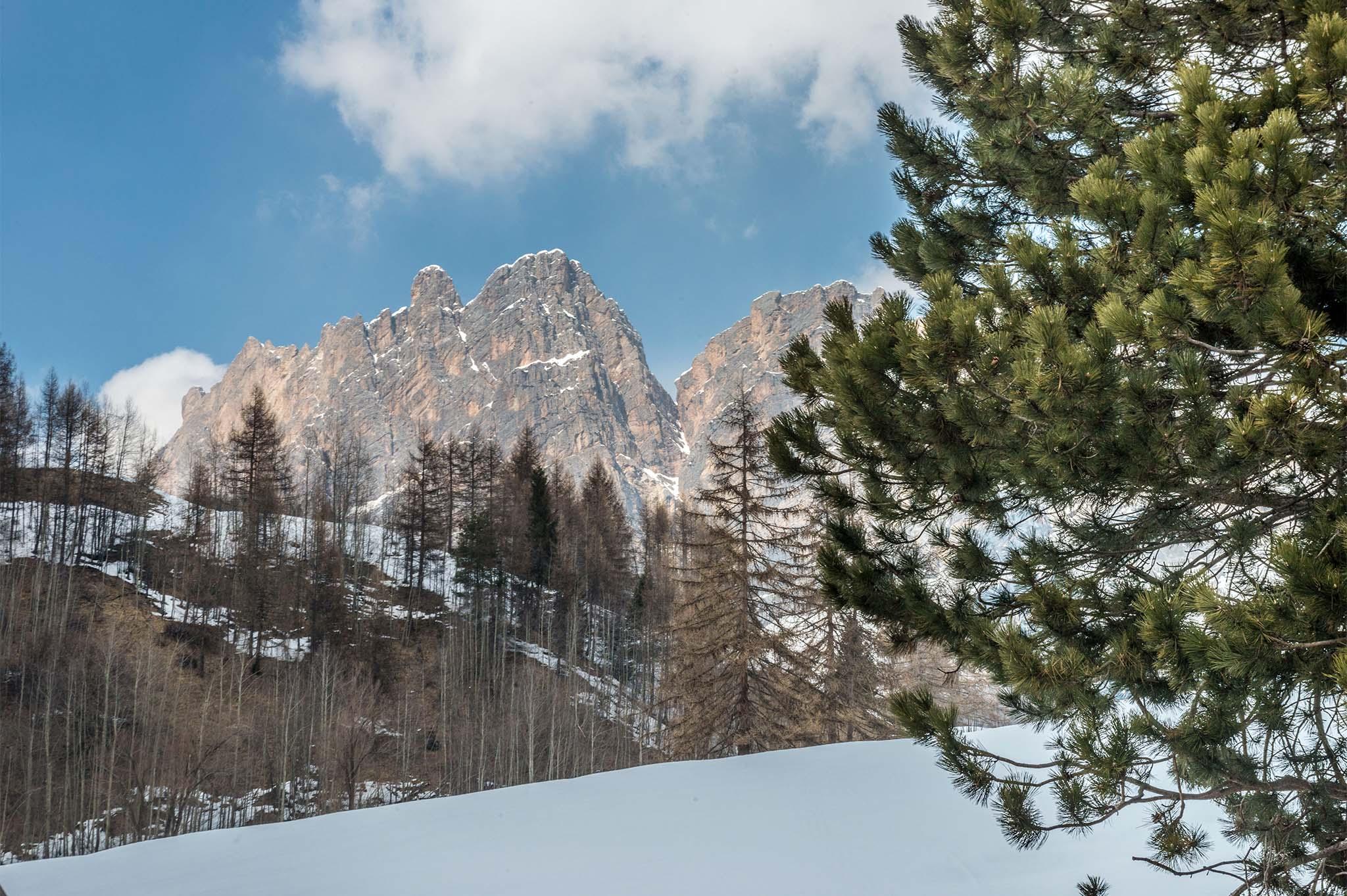 Castelli, Chalet e Baite in vendita Dolomiti | Sotheby's Realty - sothebys.photo 1